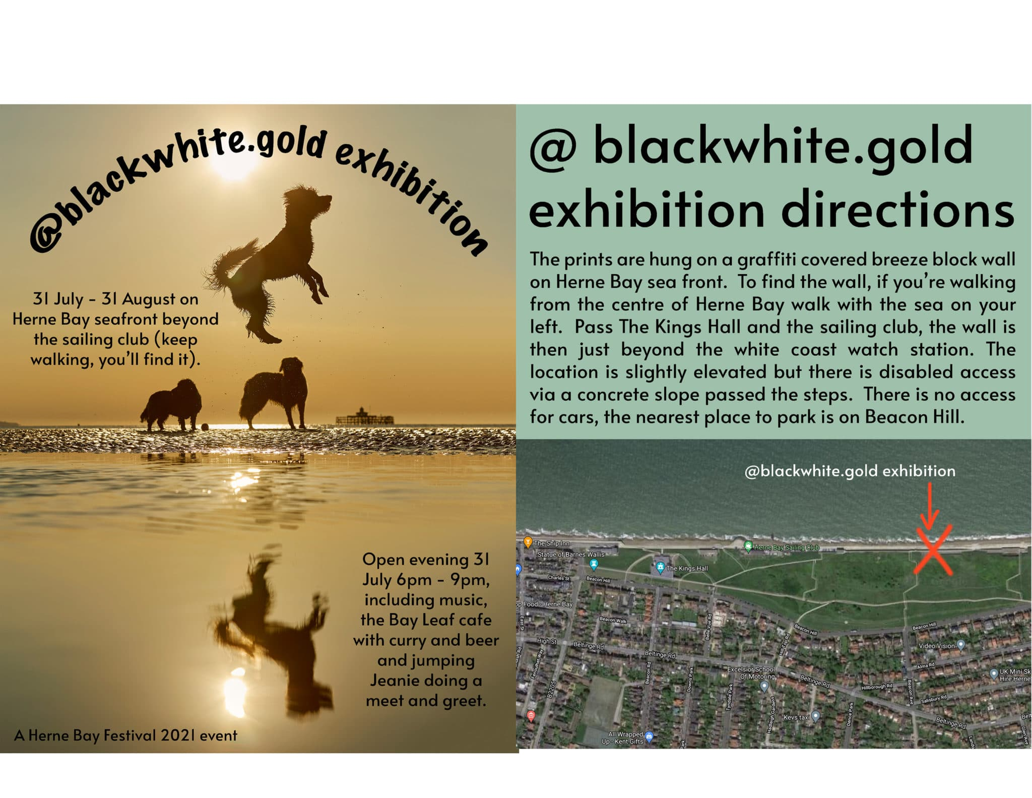 Black white gold exhibition by Liz Gregg